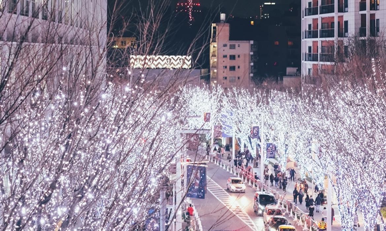 東京大阪銀色聖誕自由行攻略12天住宿交通行程規劃篇,日本六本木Hills以及橫濱紅磚倉聖誕市集完整行程推薦!